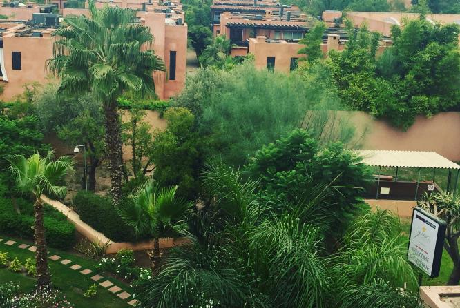 Medina Gardens 1